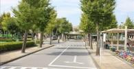 新宿交通公園内の道路と横断歩道