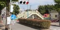 交通公園の横断歩道と信号機