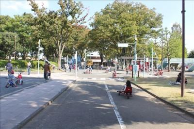 郷土の森公園内の交通公園