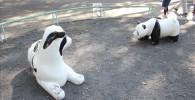 小さい幼児が喜ぶ動物の遊具