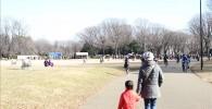 凧揚げ大会が開催されているいこいの広場