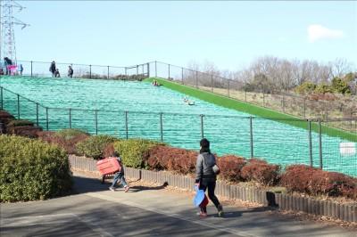 人工芝の芝ソリゲレンデ