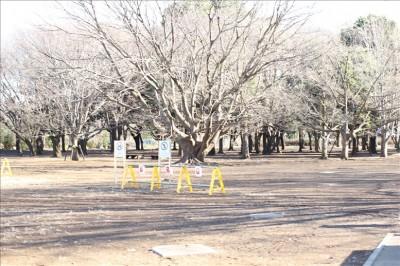 小金井公園BBQ広場