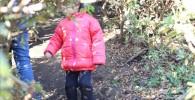 つつじの迷路を探索する3歳の男子