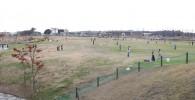 修景池ゾーンの大きな芝生広場