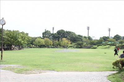 広大な芝生の広場