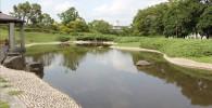 川の様に広がる公園の池