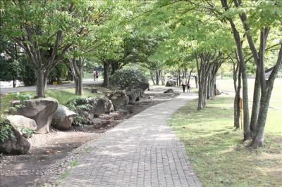 自由広場横の散歩道