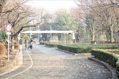 公園東口前の遊歩道