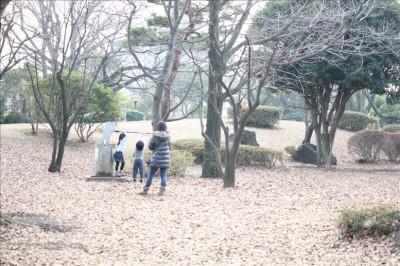 大蔵運動公園落ち葉に覆われた広場