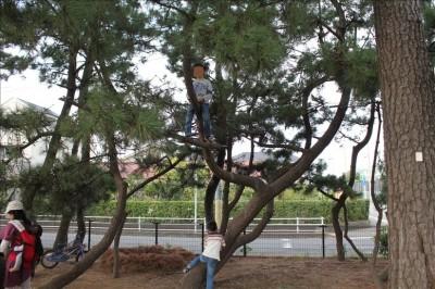 木登りをする子供の姿