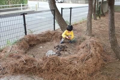 松の葉で作られた子供の秘密基地