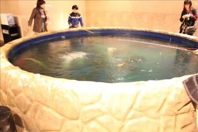 室内の釣堀。スポッチャ川崎