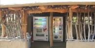 バードショー広場の自動販売機