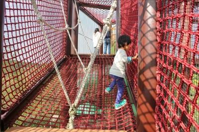 赤いロープのアスレチックを登っていく児童