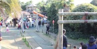 遊具広場のターザンロープ