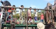 丸太の橋を渡る子供たち