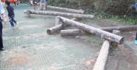 丸太の平均台の遊具