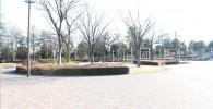 中央広場の全体写真(御勅使南公園)