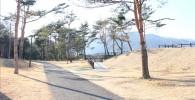 公園内散歩道(御勅使南公園)