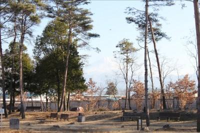 公園から見える富士山(御勅使南公園)