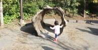 休憩所の広場の木のトンネル