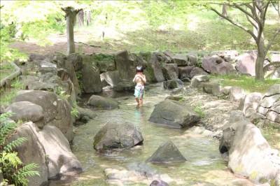 浅い小川の様な流れ