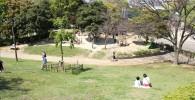 富士公園芝ソリが楽しめるスポット