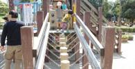 グラグラ丸太橋
