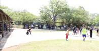 BBQ前の広場