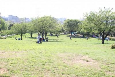 なぎさ公園丘の芝生広場
