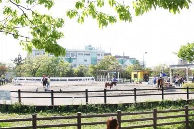 fuji-park-035