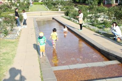 フラワーガーデンのジャブジャブ池で遊ぶ子供たち
