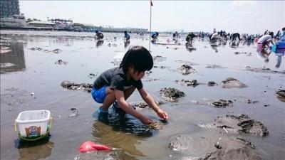 潮干狩りでヤドカリ拾いに夢中の4歳児