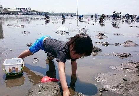 金田海岸で潮干狩り初体験のこども
