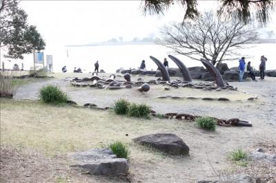 船のイカリがオブジェとして埋めてある広場
