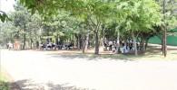 木々に囲まれた潮風公園BBQ場所