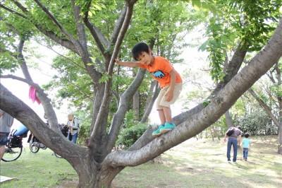 潮風公園で木登りを楽しむ幼児