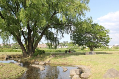 多摩川河川敷のせせらぎ公園