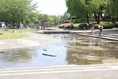 大師公園の水遊びができる水路