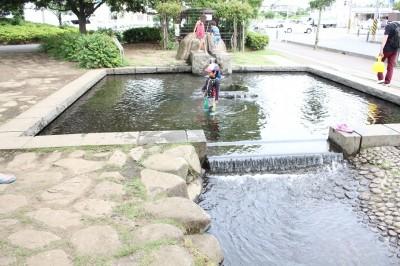 さむかわ中央公園のじゃぶじゃぶ池とせせらぎ