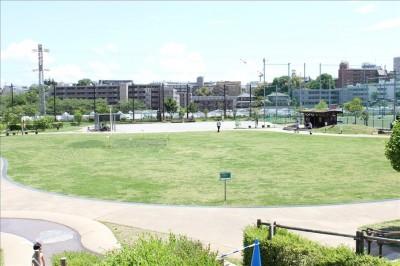 カッパーク鷺沼の広い芝生の広場の全体写真