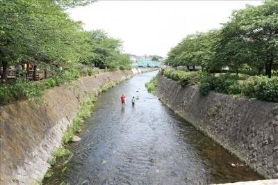 綾南公園の横を流れるきれいな川