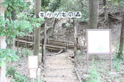 綾南公園キツツキの森入口