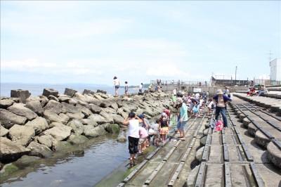 海風公園の親水護岸の様子