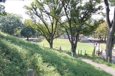 大塚古墳石段中央からの眺め