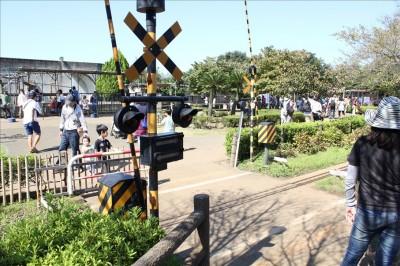 市川動植物公園踏切