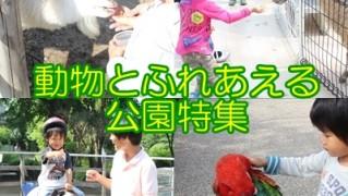 動物と触れ合える公園特集