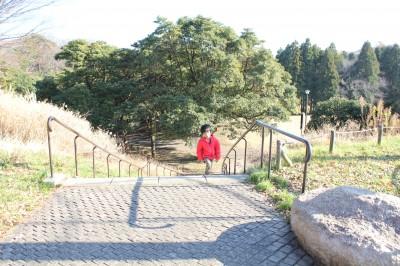 根岸森林公園