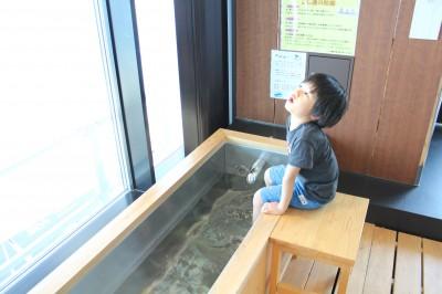 海ほたる 無料の足湯